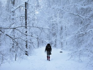Winter: I'm Lovin' It