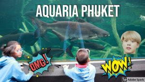 aquaria phuket derick and summer thailand